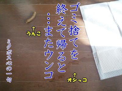 川柳P1240448