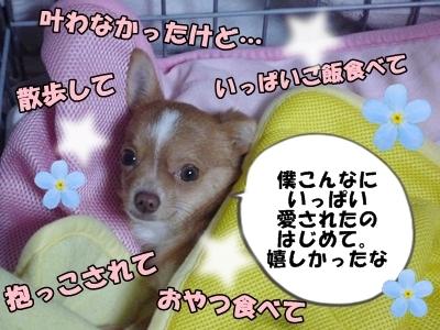 ふたばP1250424