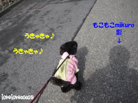 IMG_6865-cocoa_20130208185442.jpg