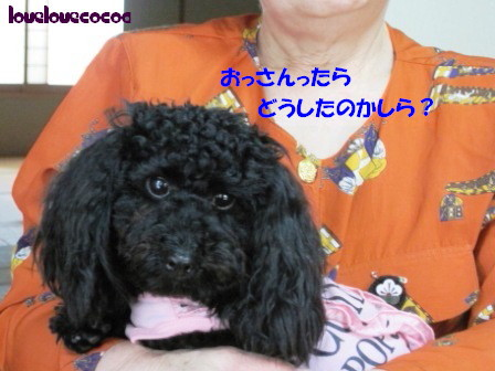 IMG_7898-cocoa.jpg