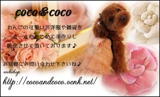 shopmeishiE383BC-thumbnail2.jpg