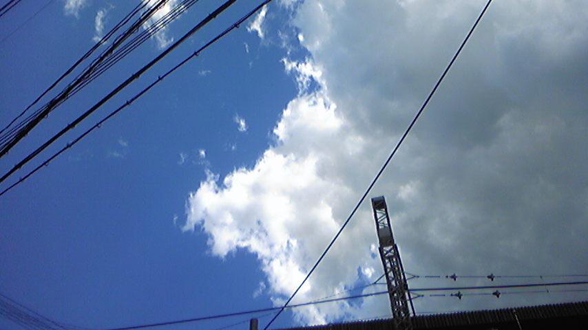 Image365.jpg