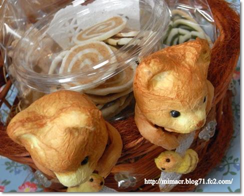 cats_20100530074738.jpg
