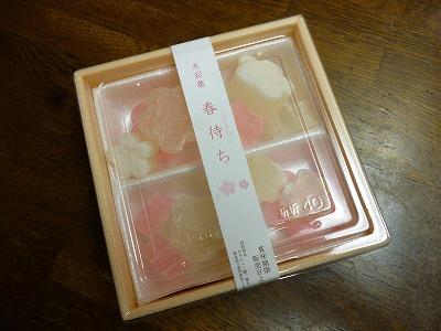 菓子 秋月 (1)