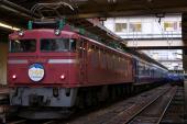 091128-JR-W-tsurugi-115-niigata-3.jpg