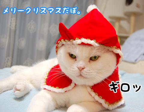 111224_クリスマス04