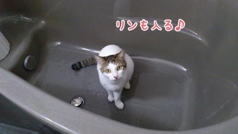 120127_リンお風呂好き02