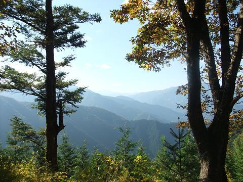 山頂からの展望