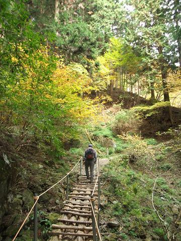 木橋を渡って