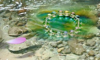岩魚と蓮とブレスの完成10_edited-3