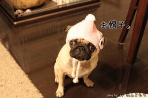 あったかそうな帽子。
