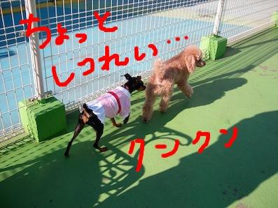 UNI_2240.jpg
