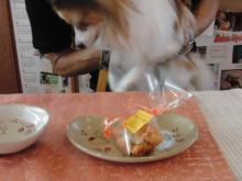 アタシんちの男子-2歳の誕生日