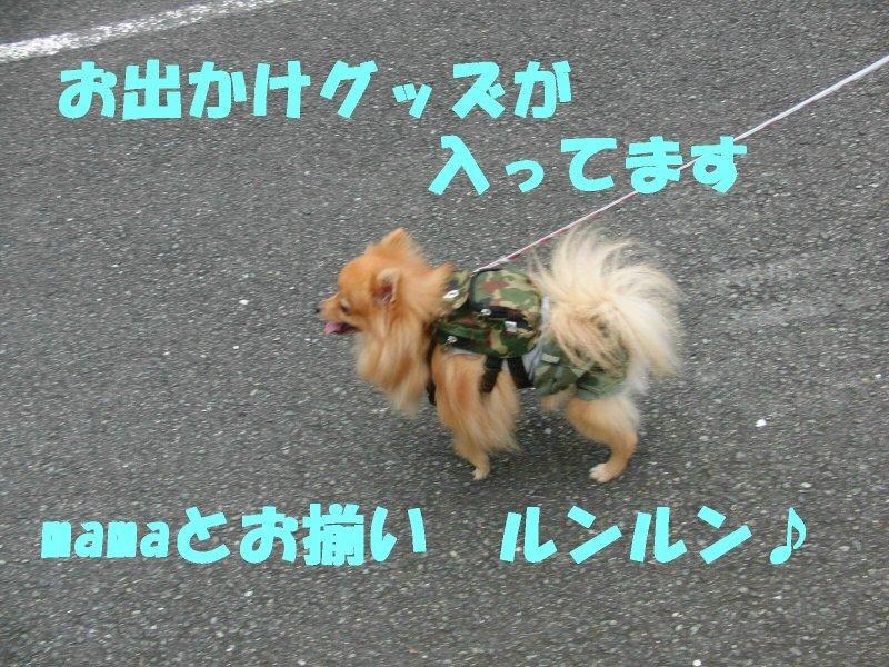 アタシんちの男子
