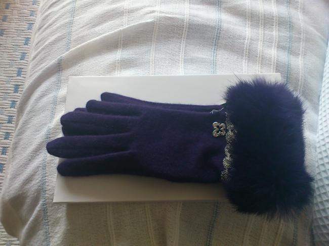 アナスイ 手袋