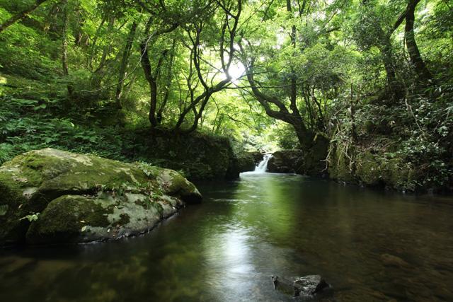 八重滝 河鹿滝