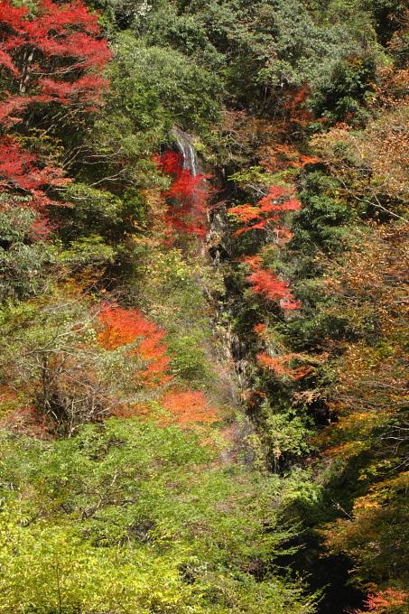 鹿落ちの滝