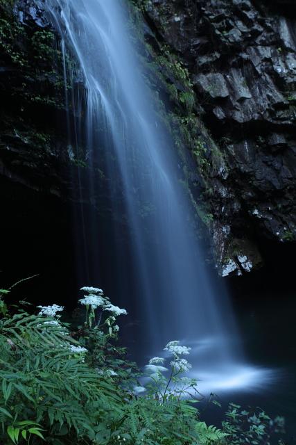神秘に満ちた「龍頭ヶ滝」2