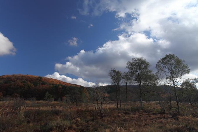 霧ヶ谷湿原1