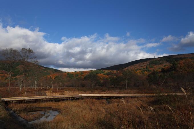 霧ヶ谷湿原2