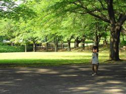 新緑の大庭城址公園