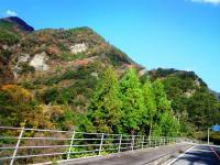 2009.12.4 寒風山付近
