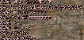 10060901.jpg