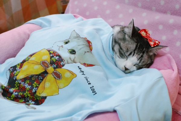 Tシャツとミリン