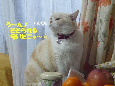 う~ん♪そそられる匂いだニャ~☆
