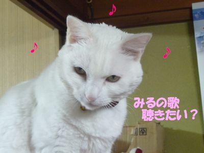 みるの歌聴きたい?