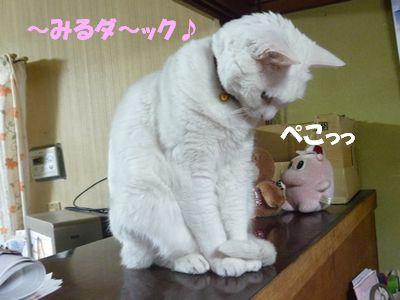 ~みるダ~ック♪