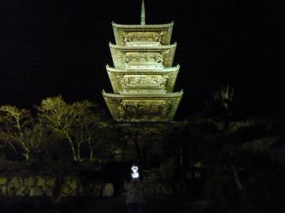 五重塔ライトアップ2