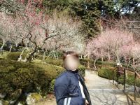 石山梅園モザ