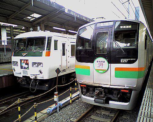 横コツE217系F53編成(右)(2009年5月17日・東京駅)