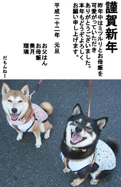 ブログお年賀ごあいさつ2010年