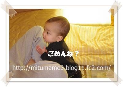 IMGP3382.jpg