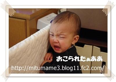 IMGP3391.jpg