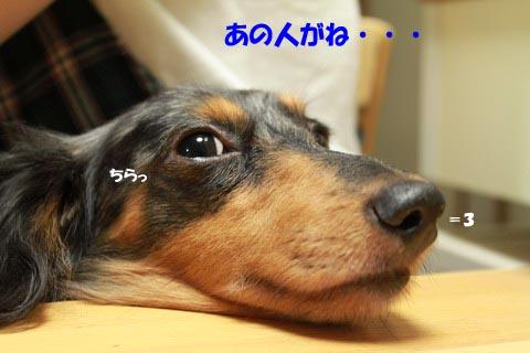 IMG_4282-1.jpg