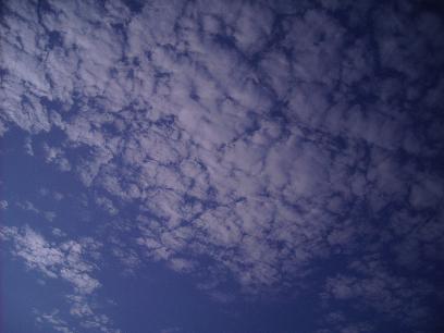 DSCN4266001.jpg