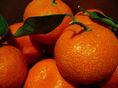 美味しい蜜柑2