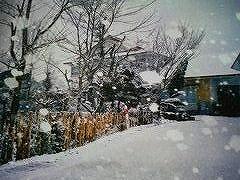 田舎の初冬
