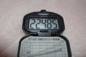 091231-050万歩計(縮小)
