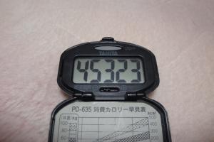 100101-060万歩計(縮小)