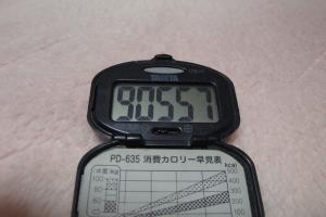 100103-050万歩計(縮小)