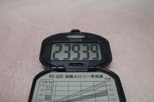 100403-060万歩計(縮小)