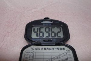 100404-070万歩計(縮小)