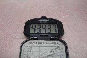 100411-050万歩計(縮小)