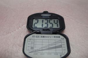 100417-040万歩計(縮小)