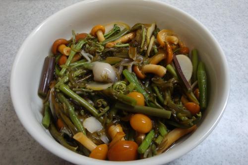 100418-030めかぶと山菜の和えもの(縮小)
