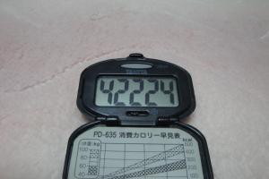 100418-050万歩計(縮小)